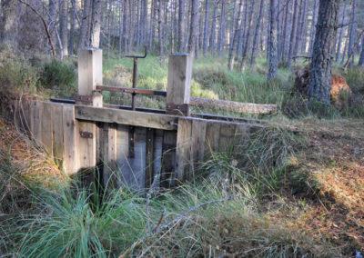 Duack Sawmill