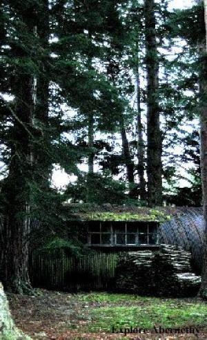 Tree Nursery Buildings