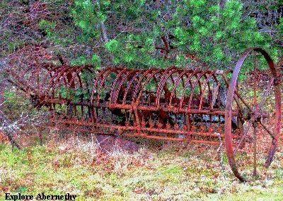 Tree Nursery Machinery