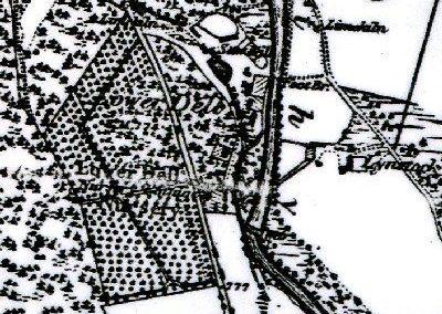 Tree Nursery Map