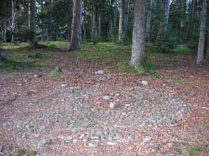 Tree Nursery Summerhouse floor